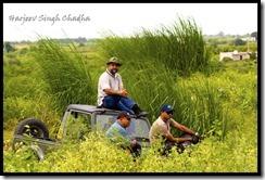 IMG_8212 Amit Bajaj Rahul Maroli Gypsy spectators
