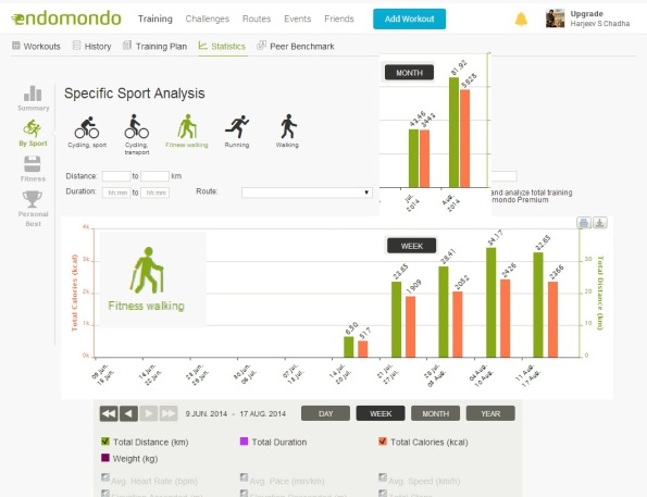 Stats for Fitness Walking 30 Day Challenge